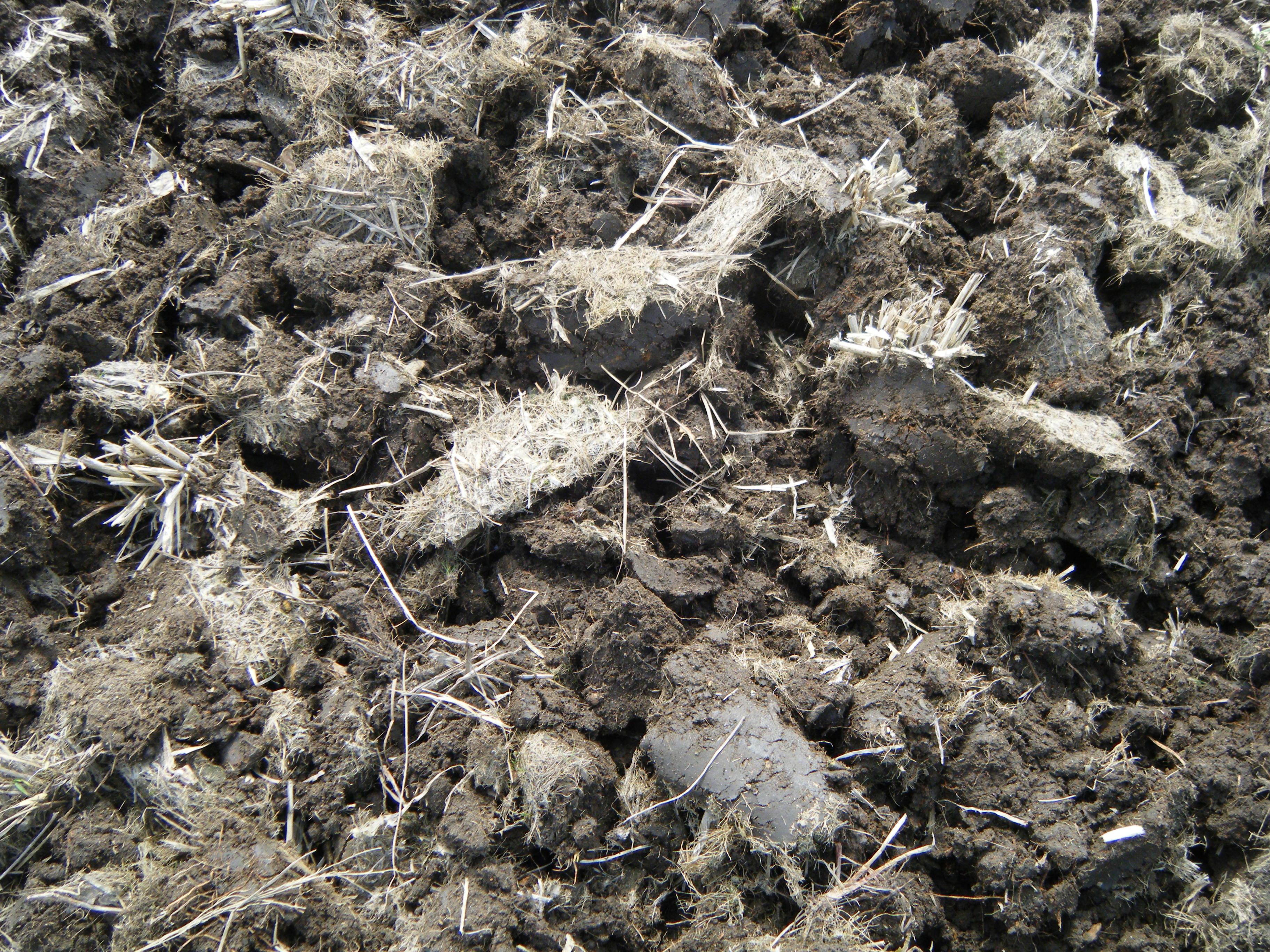 田起こし後の田んぼの土の様子。細かくせずに、ゴロゴロ起こす。