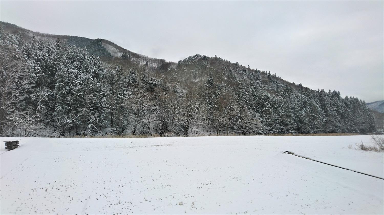 真冬でも、ここまで真っ白けなのはあまり見られなかったような。