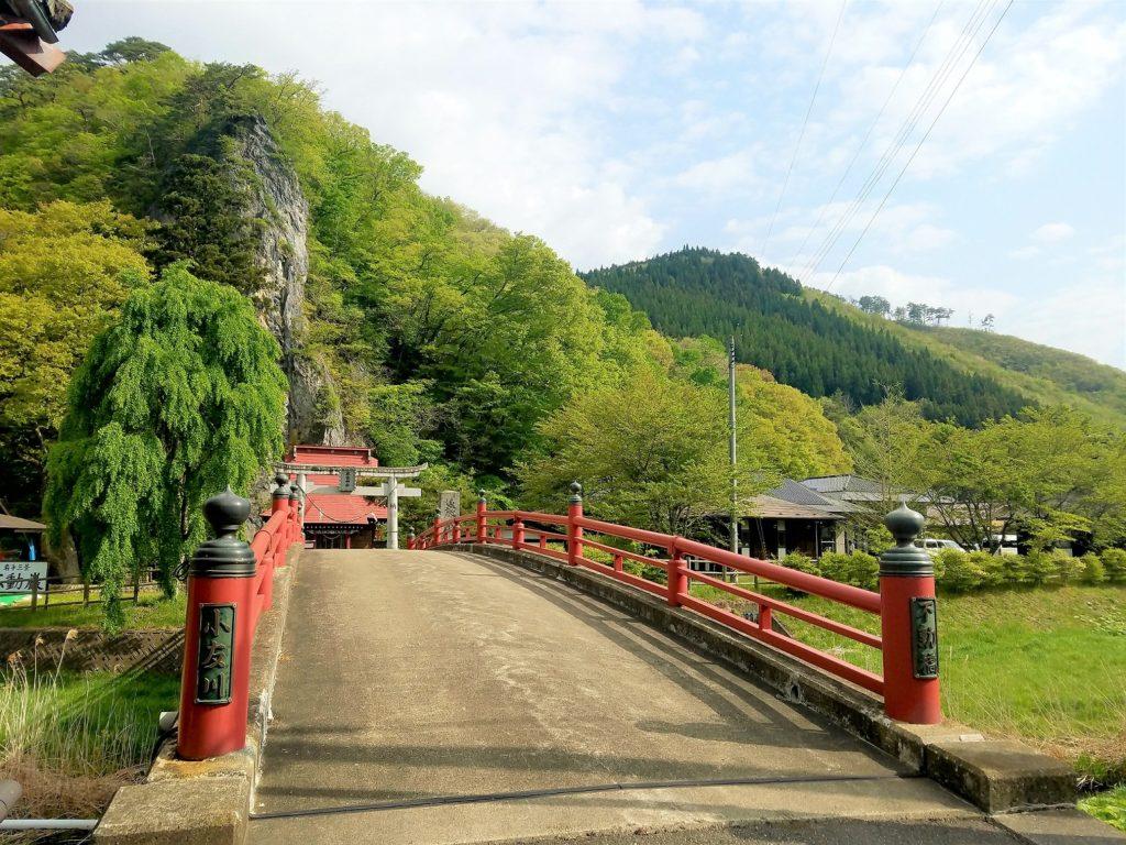巌龍神社と山の木