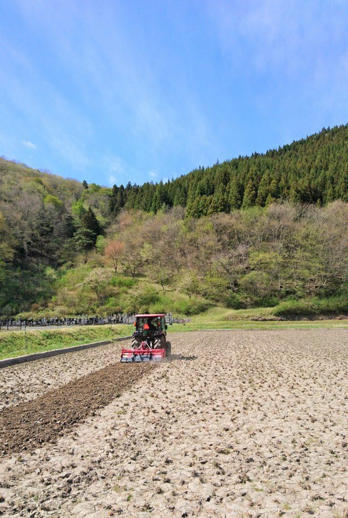 土が乾いたタイミングってこの春はあんまりなかったなぁ。