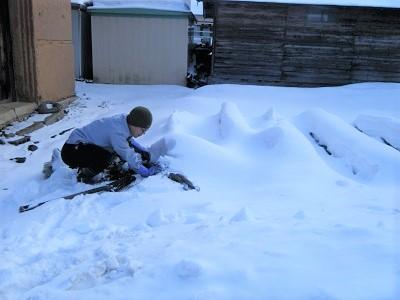 真冬に土掘るあやしい人。